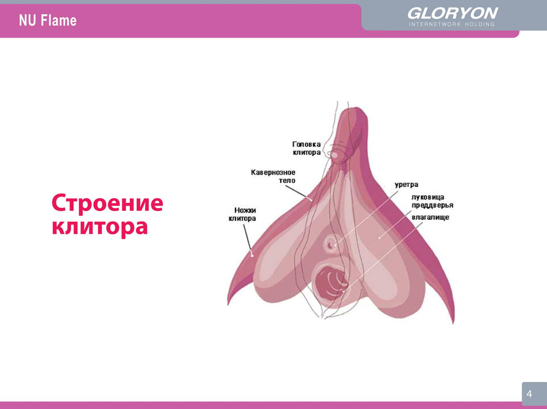 golaya-evelina-bledans-v-svoey-razdevalke